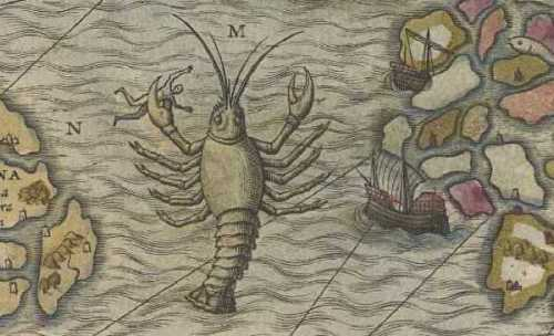 "This giant lobster in Magnus's ""Carta Marina,"" is described as an octopus in the accompanying text.  Polypus, which means ""many-footed,"" was often used to describe many different types of multi-limbed creatures, from lobster to octopi.  Such sweeping designations showed confusion about what types of creatures actually lived in the sea."