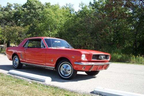 Mustang 071