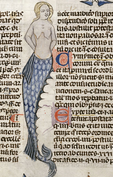 "Mermaid in the margins of ""Calendarium, Decretals of Gregory IX,"" a medieval text now housed in the British Museum."