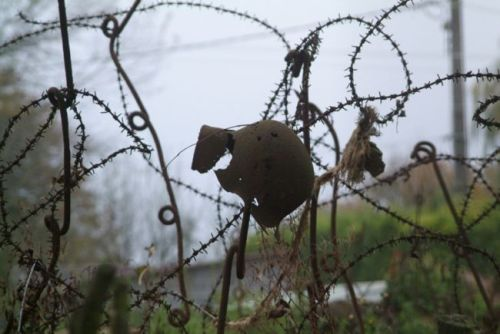 BarbedWire02