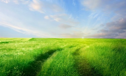 road-in-the-grass-field-310-2560x1600
