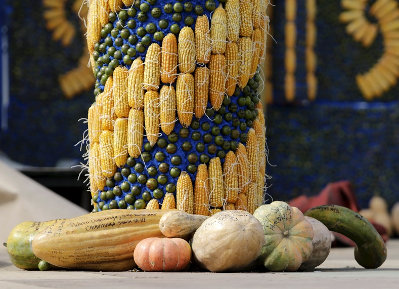 Detail of an altar, made of corn and pumpkins, where Pope Francis will give the main mass on July 12 during his visit to Paraguay, in Asuncion